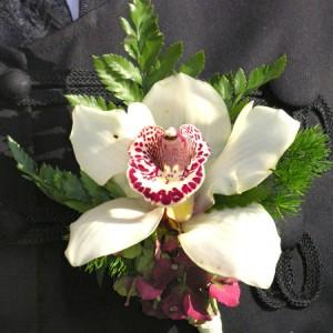Orchidea fejből kicsi Hortenziával készült vőlegény kitűző