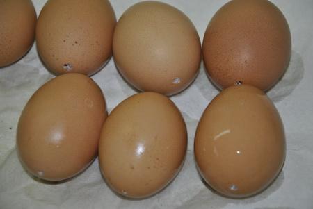 kiszúrt, kifújt tojások